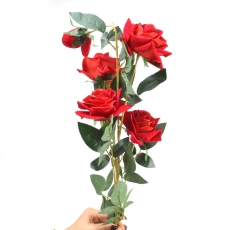 Trandafir catifea gigant cu tulpina lunga rosu 27-80