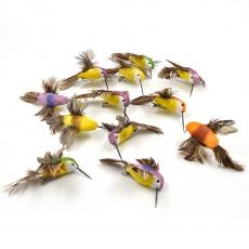 Set 12 colibri wild mici pe clips model 9090