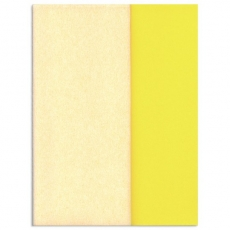 Hartie creponata Gloria Doublette alb-alb galben, cod 3303