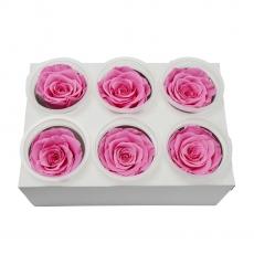 Set 6 Trandafiri Criogenati - roz C21-93