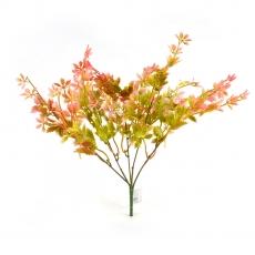 Flori Buchet Rubus verde rosu
