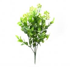Flori buchet Kalanchoe mare verde cu alb