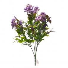Flori buchet Kalanchoe mare verde cu lila