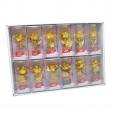 Set 12 Trandafir Golden Rose Best wishes